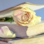 buku dan pembatas mawar putih