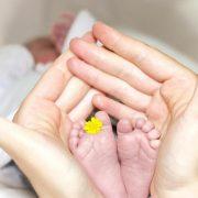 Tentang Bayi